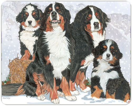 Bernese Large Cutting Board