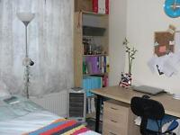 Double room to rent in shared house Lawrence Street. Double glazed, central heating, dishwasher.