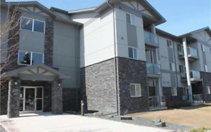 2 bedroom appointment style condo for rent March 1st