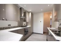 Modern and Spacious 3 Bedroom Apartment! (no lounge)