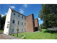 Immaculate freshly decorated two bedroom flat for rent, Balloch, Riverside Court, G838LN