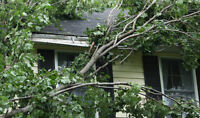 ETOBICOKE TREE CUTTING AND REMOVAL *EMERGENCY SERVICE AVAILABLE*