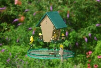 Songbird Essentials Bird Seed Catcher Platform Bird Feeder Seed Hoop -