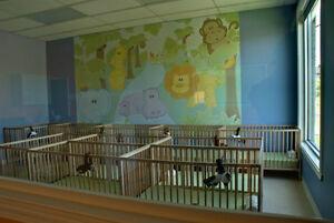 Pierrefonds - West Island Daycare Center West Island Greater Montréal image 5
