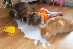 Yes, kids get VERY dirty!