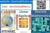 Tutoring Math by Ph. D. in Math for University and School