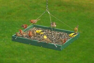 - Songbird Essentials Large Hanging Platform Bird Feeder SERUBSPF400H