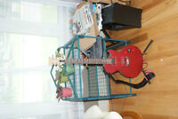 Epiphone with new neck & pickups