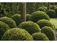Experienced Gardener with full driving license required - PART TIME