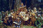Ewoks Treasure Chest