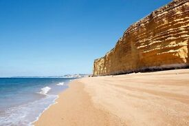 Chef for Artisan cafe/restaurant in Bridport, on beautiful Jurassic Coast. Weekdays/ some evenings.