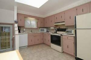 Single room and Master room for lease in Finch/Mccowan
