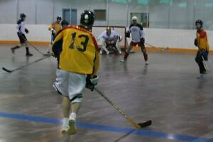 Cambridge Men's Ball Hockey League. Fun competative Ball Hockey.