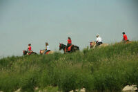 Tourism Attraction - Horseback Riding at Horseback Adventures