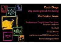 Pet Sitter - Sheffield and surrounding areas
