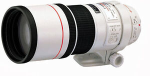 Canon 300mm f4L IS USM in mint condition.