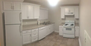 2 Bedroom newly renovated apartment (everything included)