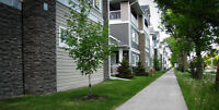 Townhome Condo 3 bedrm 2.5 bath - SPECIAL OFFER ENDS MAY 31