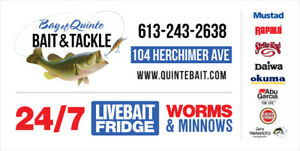Live Bait Minnows | Kijiji in Ontario  - Buy, Sell & Save with