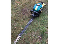 "Petrol 2 stroke hedge trimmer cutter PWO big 22"" double sided blade pruner mower lawnmower chainsaw"