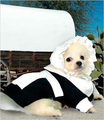 Pilgrim Girl Costume for Dogs - Size 3 (10.75