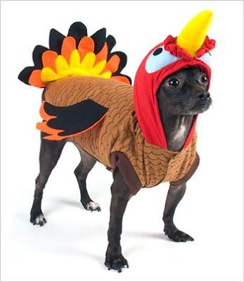 Turkey Costume for Dogs - Size 5 (14