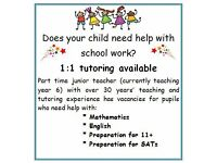 1:1 tutoring available