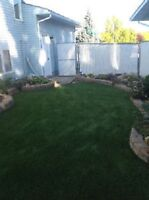 Turf Doctor Landscaping