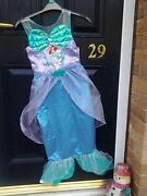 Little Mermaid Fancy Dress