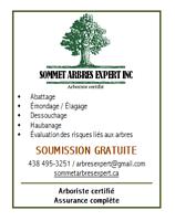 Sommet Arbres Expert Inc