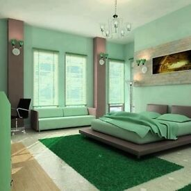Professional Painter and Decorator Tyne and Wear.Teesside 07446666993
