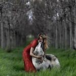 Blackwolftrading2