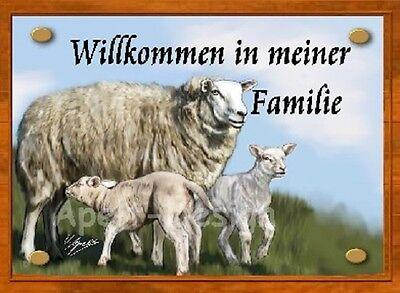 Schaf  / Lamm   /   Schild  / Bild  / B29