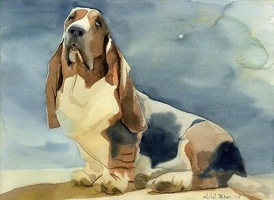 Giclee PRINT of Basset Hound  watercolor dog art sun Pet Portrait Basset Hound Dog Portrait