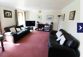 Two settee Sofas