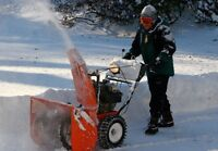 Need your driveway/walkways cleared?