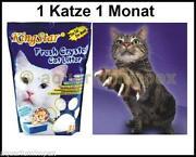 Katzenstreu Silikat