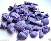 Edible Shells
