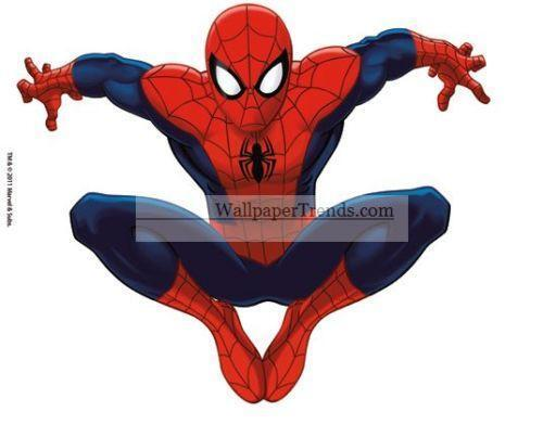 Spiderman Wall Art Ebay