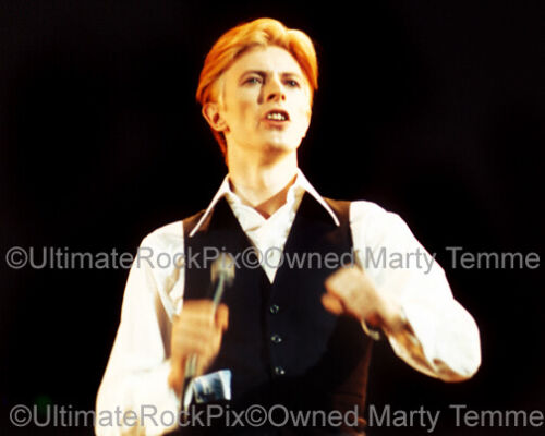 DAVID BOWIE PHOTO 8x10 Concert Photo in 1976 by Marty Temme
