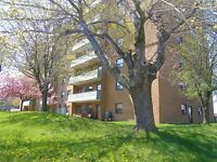 2 Bedroom down the street from Stanley Park Mall! Pet Friendly