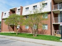 3 Bedroom walking distance to Fairview Mall! Pet Friendly
