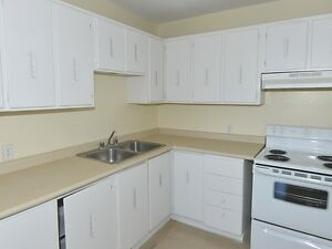 Spacious & Beautiful Suites Available Now! Kitchener / Waterloo Kitchener Area image 8