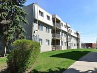 Utilities Included, 1 BR Walking distance to Fairview Park Mall!