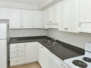 2 bdrm Ensuite Bath, Insuite Storage, Dishwasher & A/C!