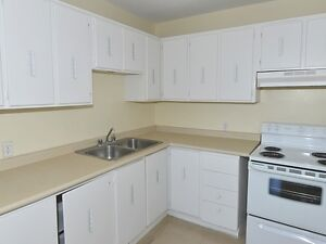 Spacious & Beautiful Suites Available Now! One Month Free Kitchener / Waterloo Kitchener Area image 8