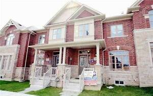 ★Looking for rent?★ Richmond Hill / Markham Area