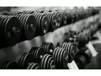 Wanted Weights