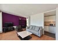 **Fantastic Two Bedroom Two Bathroom Apartment In Canary Wharf!!!