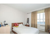 Stunning Contemporary 2 Bedroom / 2 Bathroom (1 ensuite) Peckham warehouse apartment